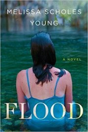 melissa scholes young book cover